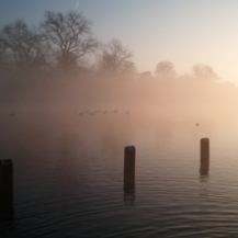 Hyde Park in the mist